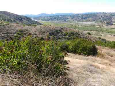 San Dieguito River Park (Coast to Crest Trail-Del Mar)